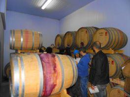 winebr0164