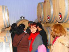 winebr0167