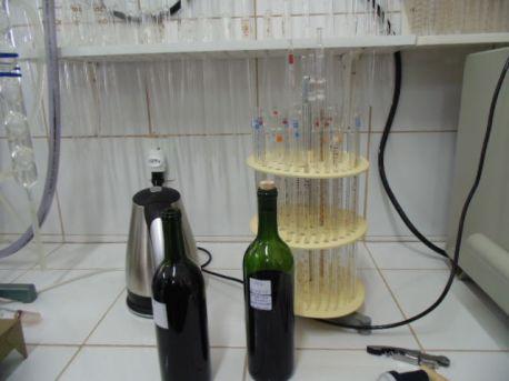 winebr0462