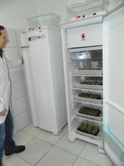 winebr0484