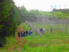 winebr0502