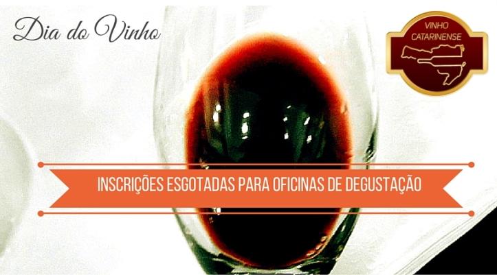 Dia do Vinho (3)